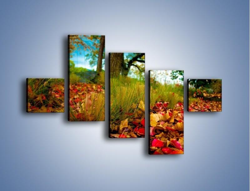 Obraz na płótnie – Droga usłana liśćmi – pięcioczęściowy KN172W3