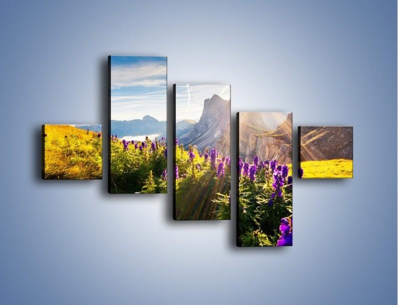 Obraz na płótnie – Góry w poświacie słońca – pięcioczęściowy KN502W3