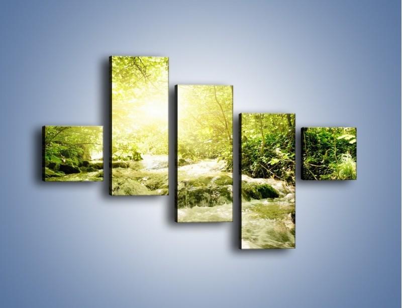 Obraz na płótnie – Wzburzony potok leśny – pięcioczęściowy KN508W3