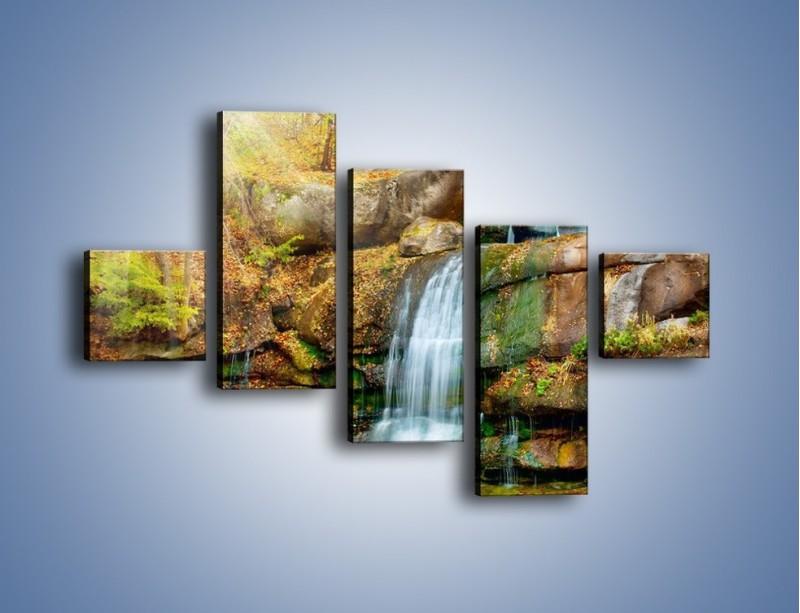 Obraz na płótnie – Leśne podłoże późną jesienią – pięcioczęściowy KN563W3