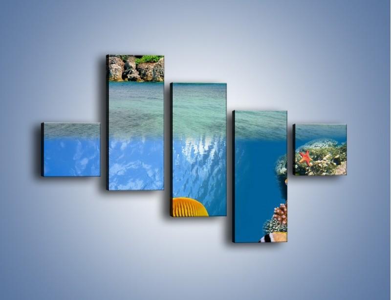 Obraz na płótnie – Podwodny świat na wyspie – pięcioczęściowy KN586W3