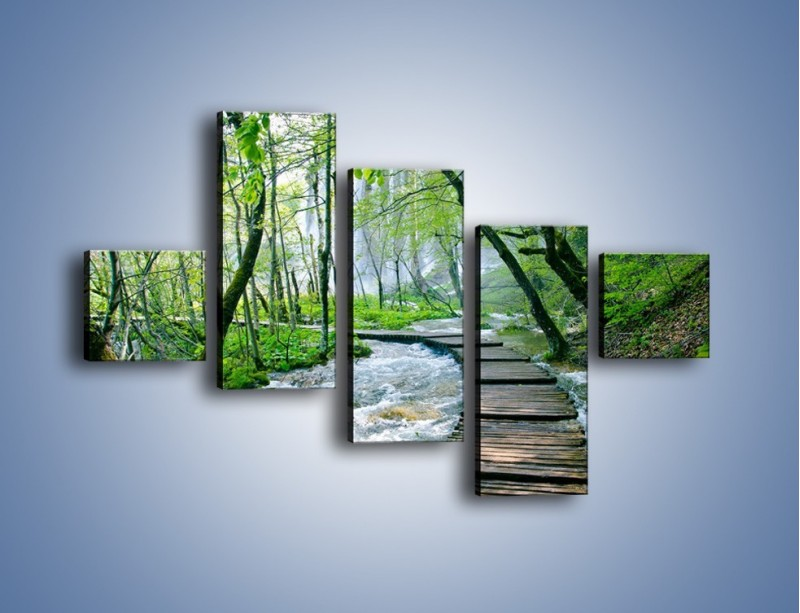 Obraz na płótnie – Drewniana kładką przez potok – pięcioczęściowy KN720W3
