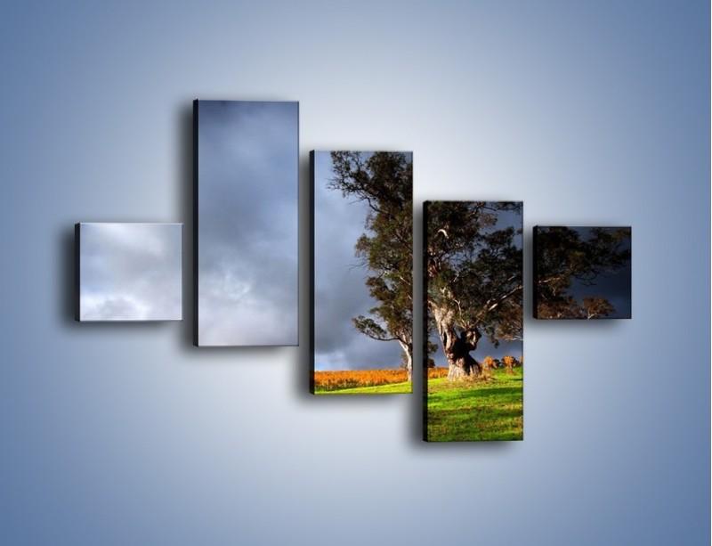 Obraz na płótnie – Burzowe chmury nad polaną – pięcioczęściowy KN748W3