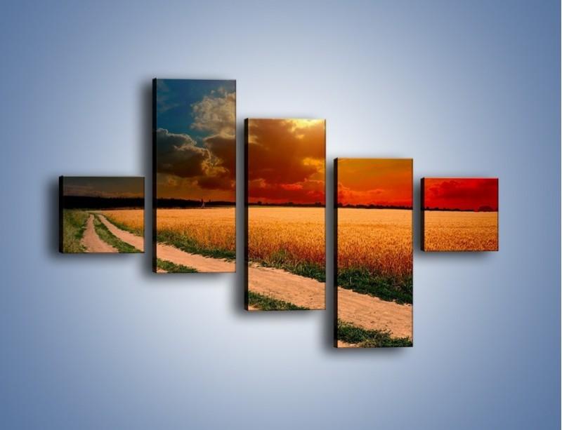 Obraz na płótnie – Zbożowa polana i jej cały urok – pięcioczęściowy KN776W3