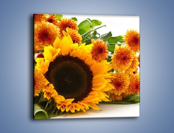 Obraz na płótnie – Słoneczniki nie tylko do jedzenia – jednoczęściowy kwadratowy K084