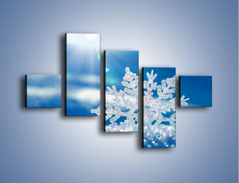 Obraz na płótnie – Diamentowa śnieżynka – pięcioczęściowy KN808W3