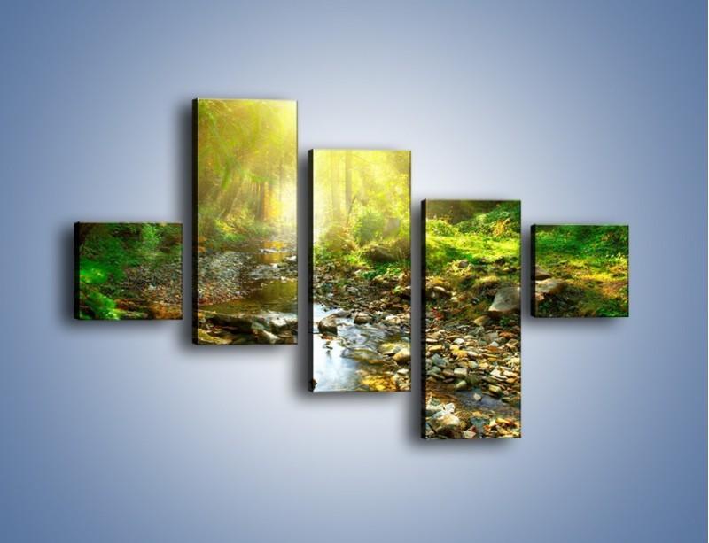 Obraz na płótnie – Kamiennym urwiskiem wśród potoku – pięcioczęściowy KN827W3
