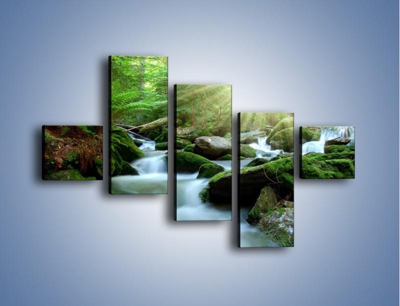 Obraz na płótnie – Silny potok w środku lasu – pięcioczęściowy KN861W3