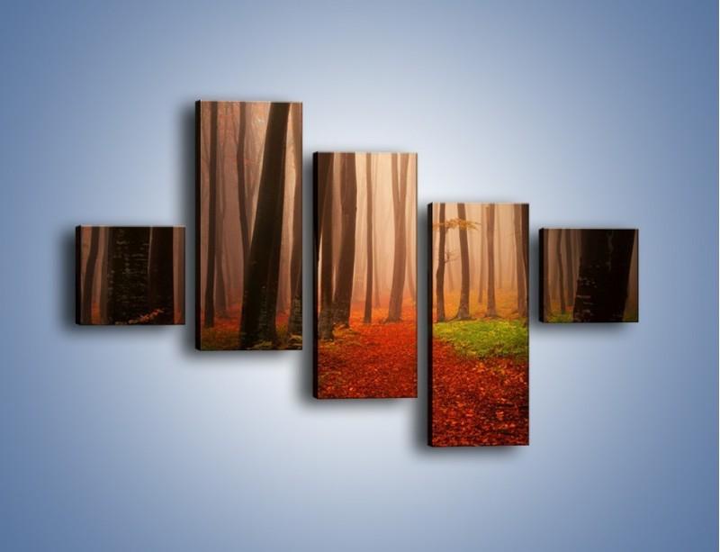 Obraz na płótnie – Las pełen tajemnic – pięcioczęściowy KN909W3