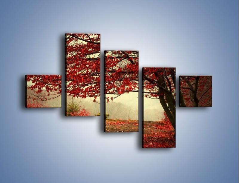 Obraz na płótnie – Spadające liście z drzew – pięcioczęściowy KN910W3