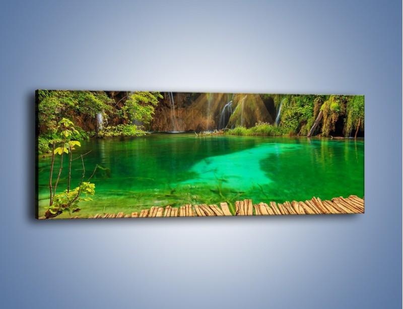 Obraz na płótnie – Zielone oczko wodne i drewno – jednoczęściowy panoramiczny KN1149A