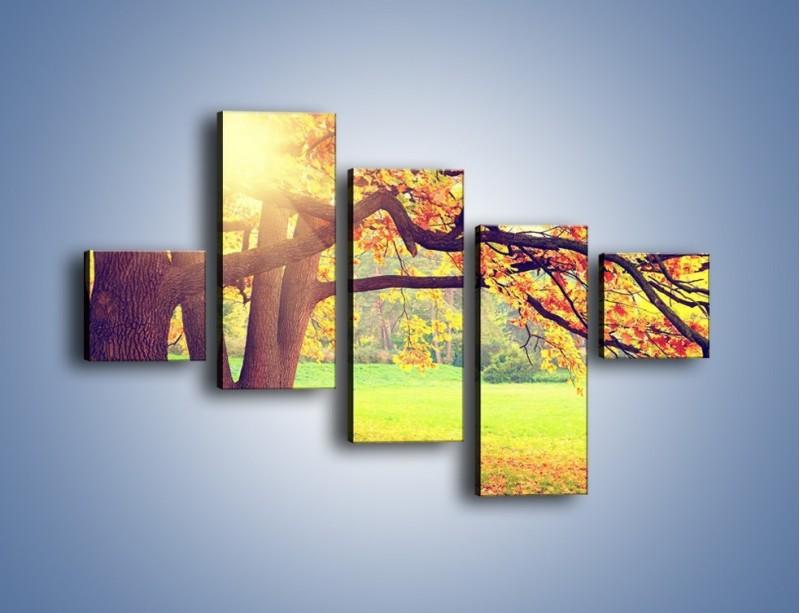Obraz na płótnie – Jesienią w parku też jest pięknie – pięcioczęściowy KN967W3