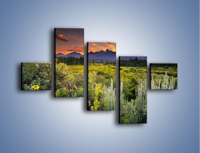 Obraz na płótnie – Wieczorny spokój na polanie – pięcioczęściowy KN987W3