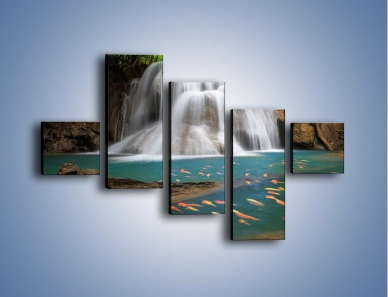 Obraz na płótnie – Wodospad i kolorowe rybki – pięcioczęściowy KN994W3