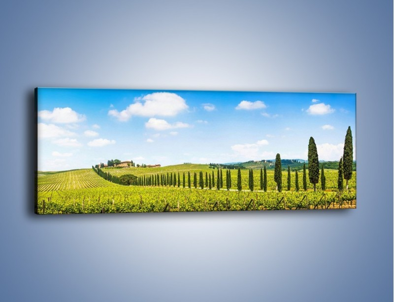 Obraz na płótnie – Wszyscy stoją w jednym szeregu – jednoczęściowy panoramiczny KN1156A