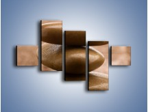 Obraz na płótnie – Delikatne piórko na twardym podłożu – pięcioczęściowy O215W3