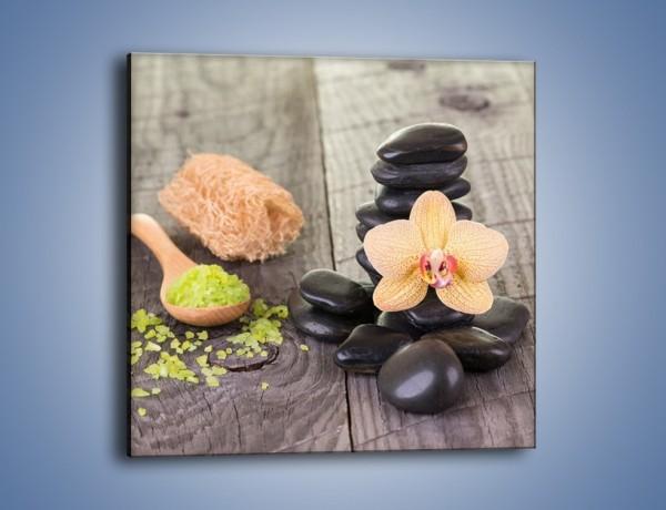 Obraz na płótnie – Szczypta relaksu i bajkowy storczyk – jednoczęściowy kwadratowy K1005