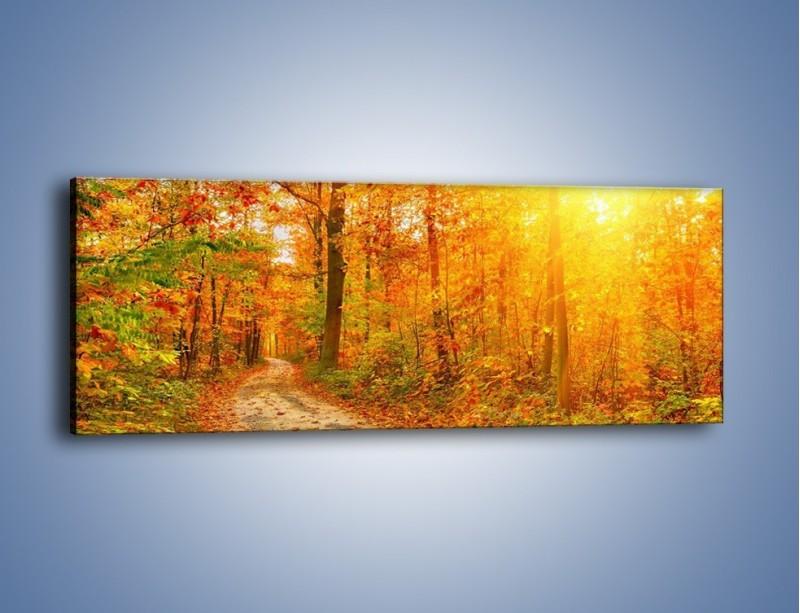 Obraz na płótnie – Leśną drużką jesienią – jednoczęściowy panoramiczny KN1163A