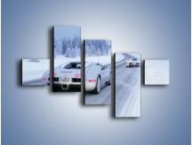 Obraz na płótnie – Bugatti Veyron w śniegu – pięcioczęściowy TM134W3