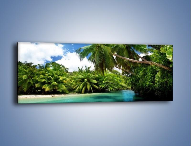 Obraz na płótnie – Rozłożone palmy i woda – jednoczęściowy panoramiczny KN1168A
