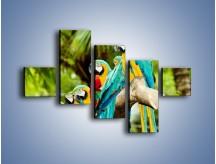Obraz na płótnie – Kolorowe papugi w szeregu – pięcioczęściowy Z029W3