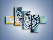 Obraz na płótnie – Czarno-biały motyl i kwiat – pięcioczęściowy Z052W3