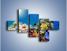Obraz na płótnie – Fauna i kolorowi towarzysze – pięcioczęściowy Z116W3