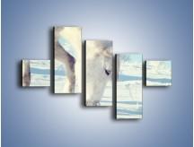 Obraz na płótnie – Arab w śnieżnym puchu – pięcioczęściowy Z144W3