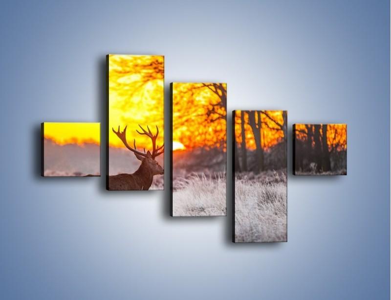 Obraz na płótnie – Jeleń o zachodzie słońca – pięcioczęściowy Z164W3