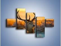 Obraz na płótnie – Ciężkie poroże jelenia – pięcioczęściowy Z165W3