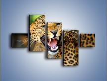 Obraz na płótnie – Jaguar z pazurem – pięcioczęściowy Z184W3
