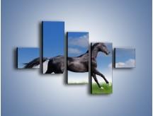 Obraz na płótnie – Dziki koń w biegu – pięcioczęściowy Z194W3