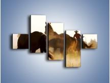 Obraz na płótnie – Cowboy wśród koni – pięcioczęściowy Z206W3