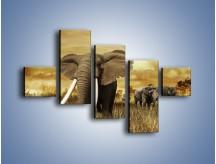 Obraz na płótnie – Drogocenne kły słonia – pięcioczęściowy Z214W3