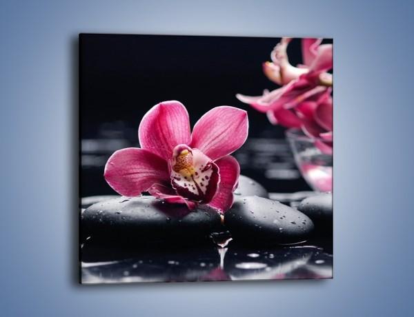 Obraz na płótnie – Kwiat i jego przyjaciele – jednoczęściowy kwadratowy K1014