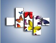 Obraz na płótnie – Kolorowo wśród motyli – pięcioczęściowy Z236W3