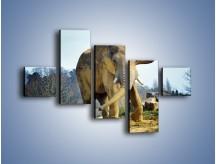 Obraz na płótnie – Ciężkie życie słonia – pięcioczęściowy Z273W3