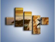 Obraz na płótnie – Dojrzały wiek lwa – pięcioczęściowy Z303W3
