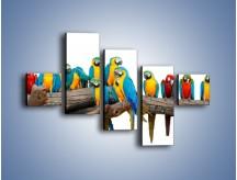Obraz na płótnie – Kolorowe stado papug – pięcioczęściowy Z326W3