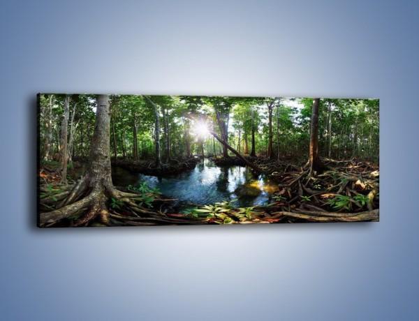 Obraz na płótnie – Bagna mające swój urok – jednoczęściowy panoramiczny KN1177A