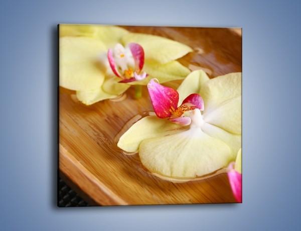 Obraz na płótnie – Drewniana łódeczka z kwiatami – jednoczęściowy kwadratowy K1024