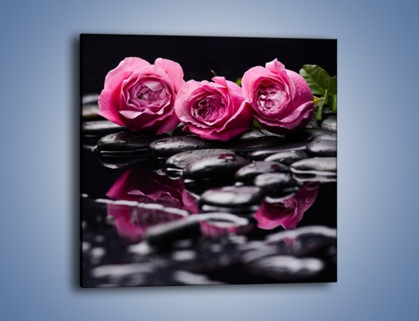 Obraz na płótnie – Malutkie różane trio – jednoczęściowy kwadratowy K1027