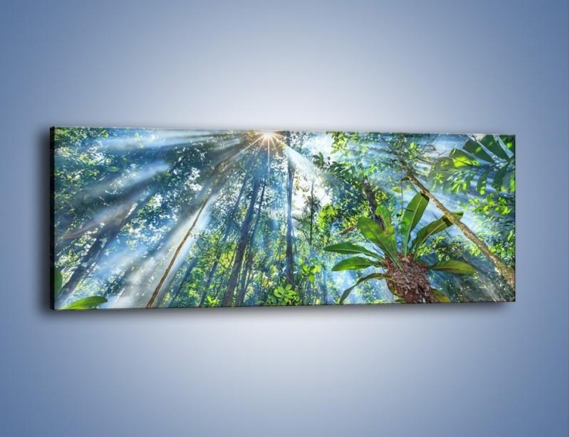 Obraz na płótnie – Dyzio marzyciel i drzewa – jednoczęściowy panoramiczny KN1189A