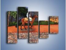 Obraz na płótnie – Arabski szejk na koniu – pięcioczęściowy GR052W4