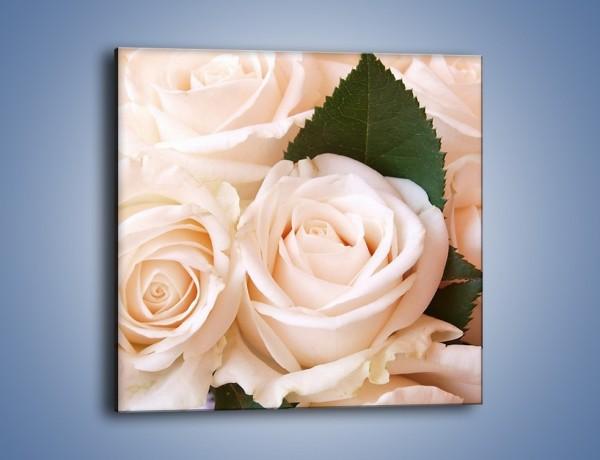 Obraz na płótnie – Liść wśród bezowych róż – jednoczęściowy kwadratowy K104