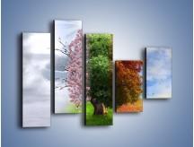 Obraz na płótnie – Cztery pory roku – pięcioczęściowy GR333W4