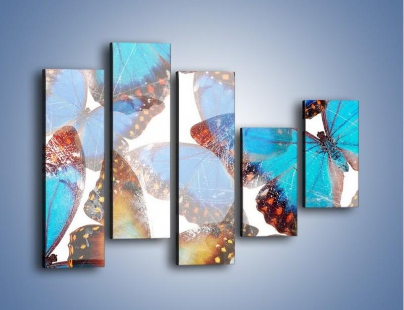 Obraz na płótnie – Motyl w niebieskim kolorze – pięcioczęściowy GR403W4