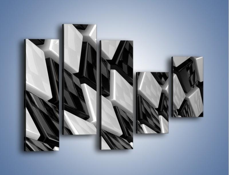 Obraz na płótnie – Czarne czy białe – pięcioczęściowy GR425W4