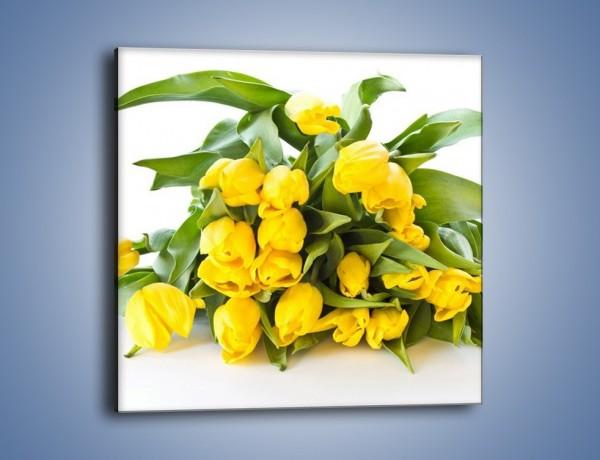 Obraz na płótnie – Piramida żółtych tulipanów – jednoczęściowy kwadratowy K111