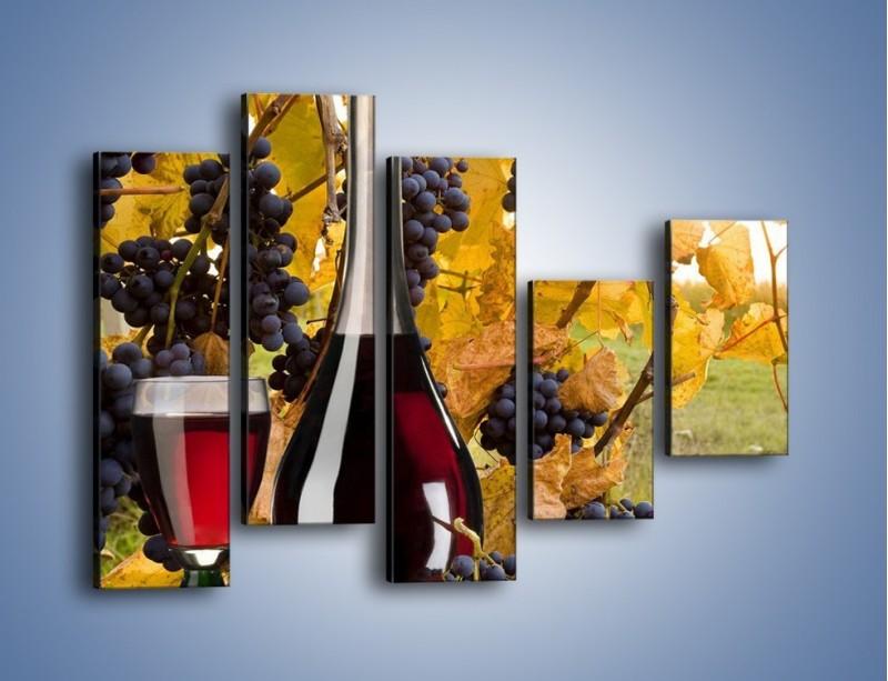 Obraz na płótnie – Wino wśród winogron – pięcioczęściowy JN007W4